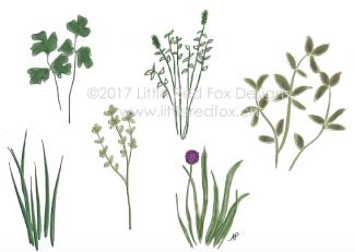 Springtime Herbs