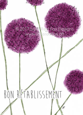 Retablissement allium
