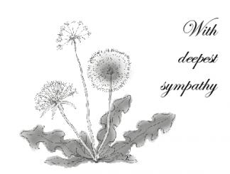 Dandelion Sympathy