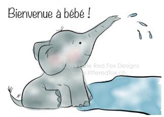 Baby Elephant (FR)