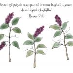 Deuil Lilas - Bible verse