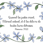 Chicory-flowers-(Ps-34:18)