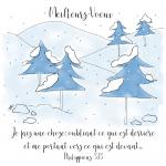 Pine Trees in Snow